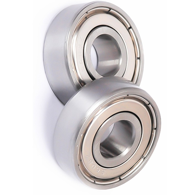 Single Row Deep Groove Ball Bearing 6304 63/22 63005 6305 63006 6306 -2z, Zz, -2rsl, -Z, -2rsh, -2znr, Nr, N, -Rsl, M, Etn9