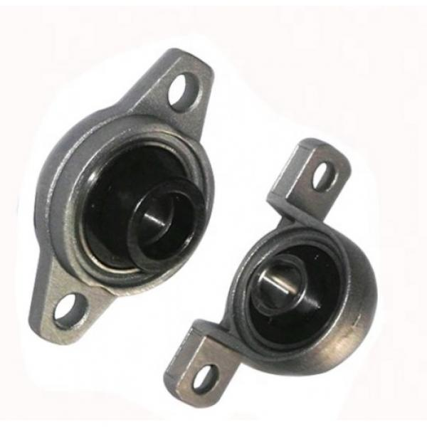 Nks/SKF/Fyh/ Pillow Block Ball Bearing Ucf206, UCP206, Ucfc206, UCT206, UCFL206, UCP206-18, UCP206-19/UCT205-18/for Agriculture Machinery, Mask Machine. #1 image